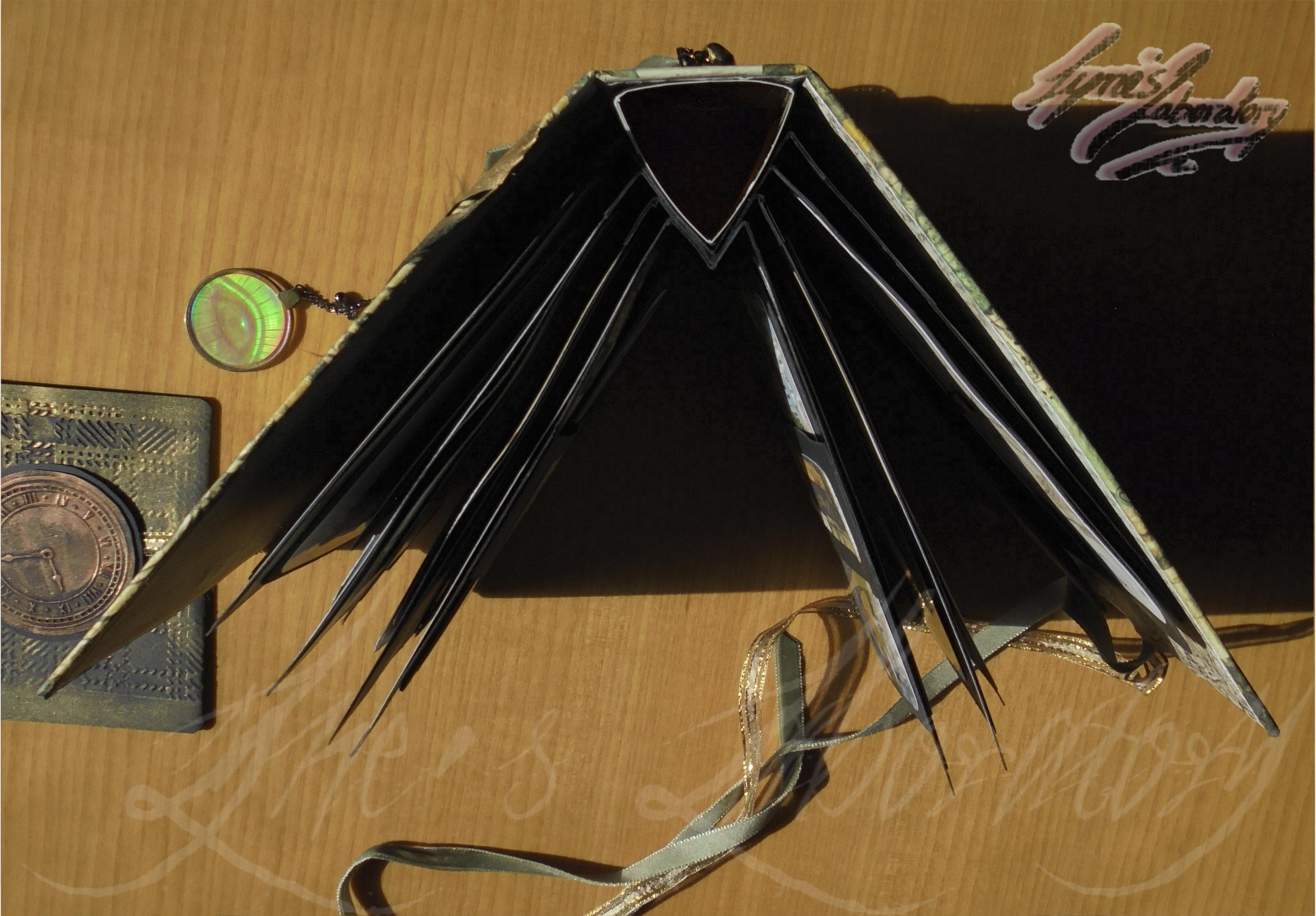 album araña espina